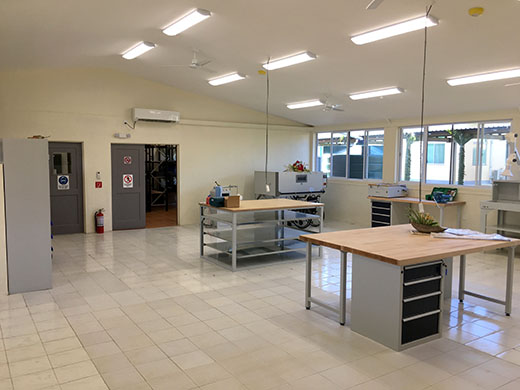 Photo of the workshop newly renovated ready for the opening. Work benches and prosthetic machinery such as an oven are in view, along with storage cupboards and a storage room.