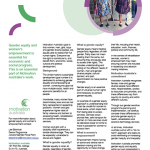 Gender equity and women's empowerment factsheet cover